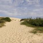 La dune à l'assaut du ciel