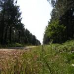 Les passes, sentiers régulièrement entretenus, invitent à la promenade.