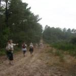 Autour du camping municipal du Pin Sec